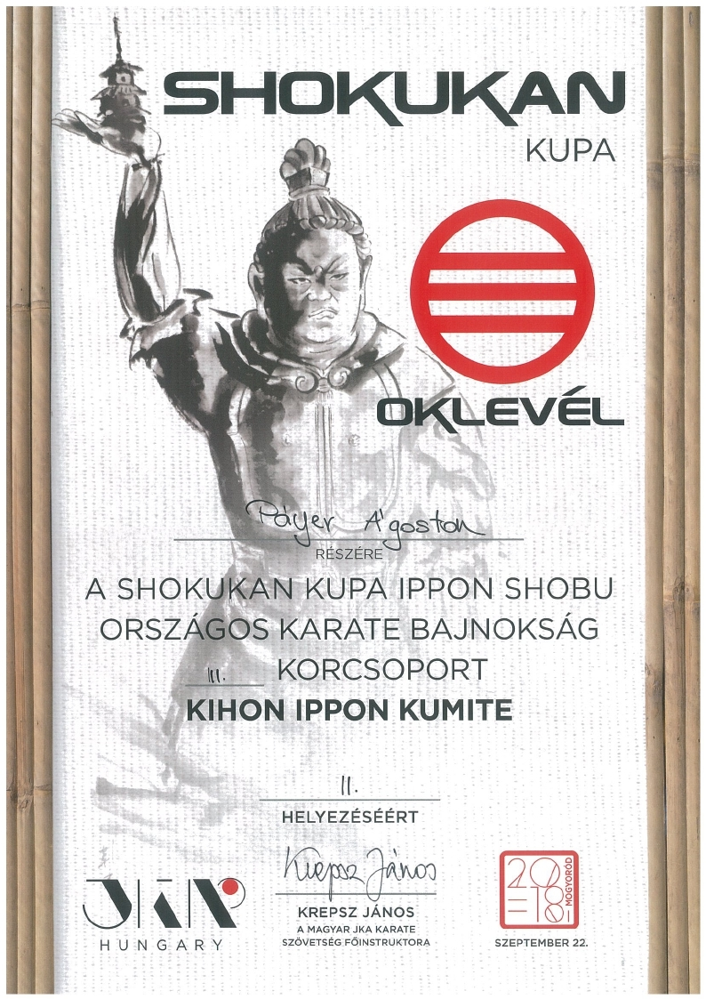 Páyer Ágoston Kihon Ippon Kumite II. hely